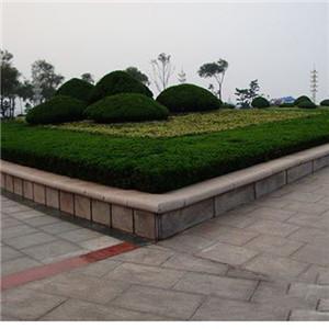 五莲红花坛石